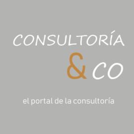 Portal Consultoria &Co