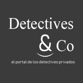 Portal Detectives &Co